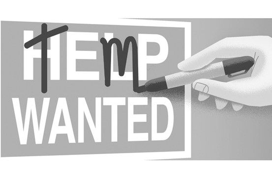 3plustemptopermTemps-Needed